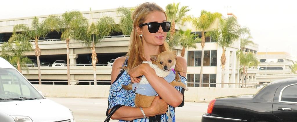Paris Hilton Hasn't Changed a Bit
