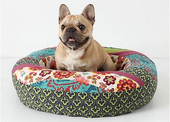 Online Sale Alert! Anthropologie Doggie Gear