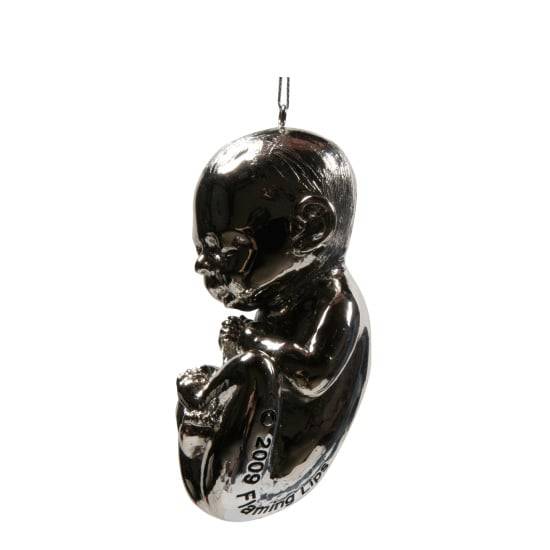 Fetus Items to Celebrate Pregnancy