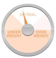 FIT Calculator: BMI