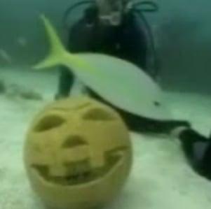 Underwater Pumpkin Carving 101