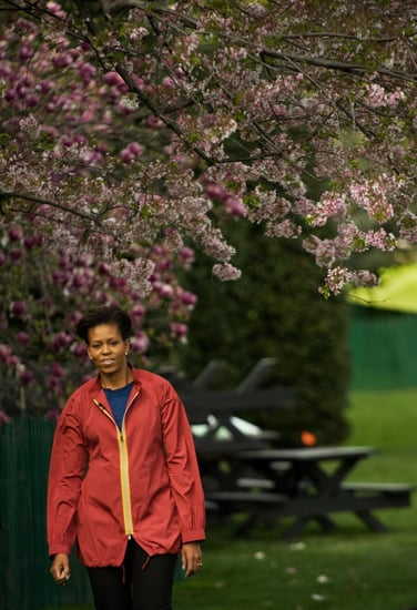 Michelle Obama Plants White House Garden (Pictures)