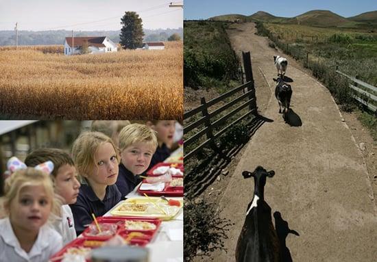 Should Obama Make Dept. of Agriculture the Dept. of Food?