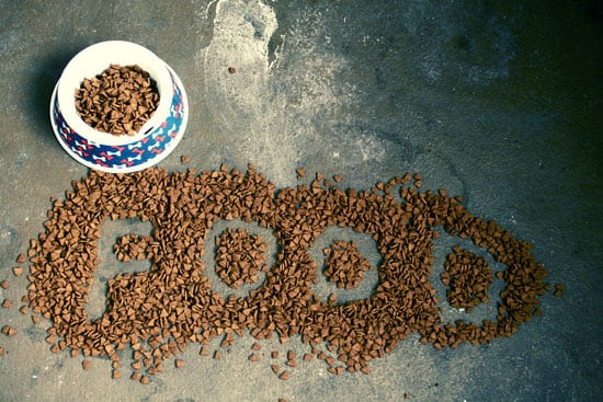 Kroger Pet Food Recall