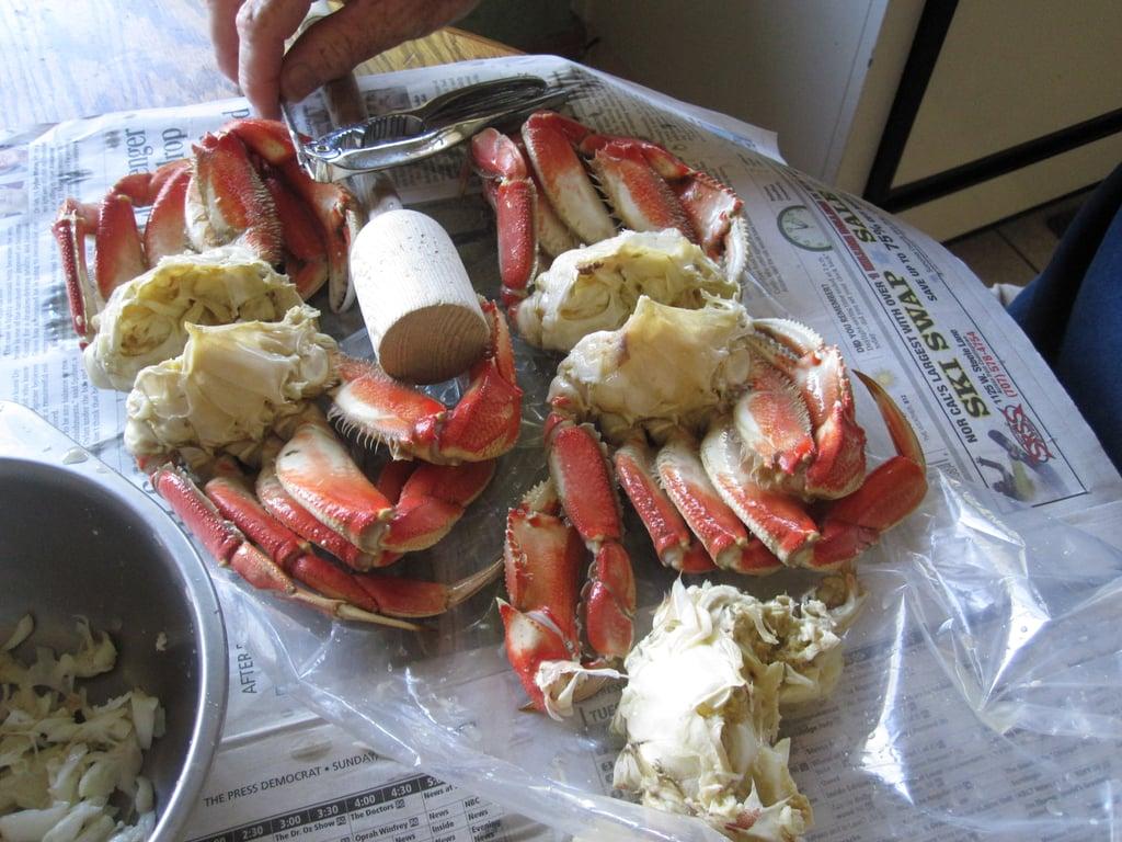 Warm Maryland Crab Dip With Lemon Panko Topping