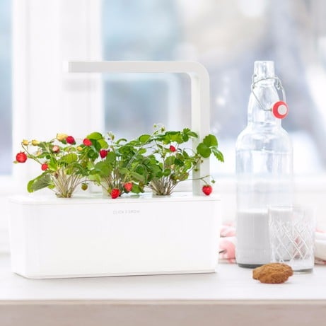 Tech-Savvy Gardening Products