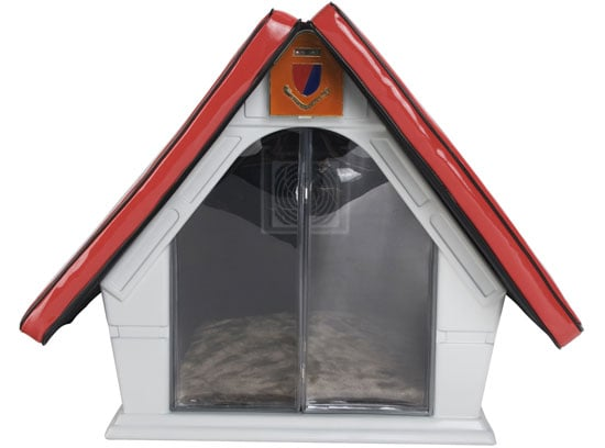 This (New) Home: Cool Pet House