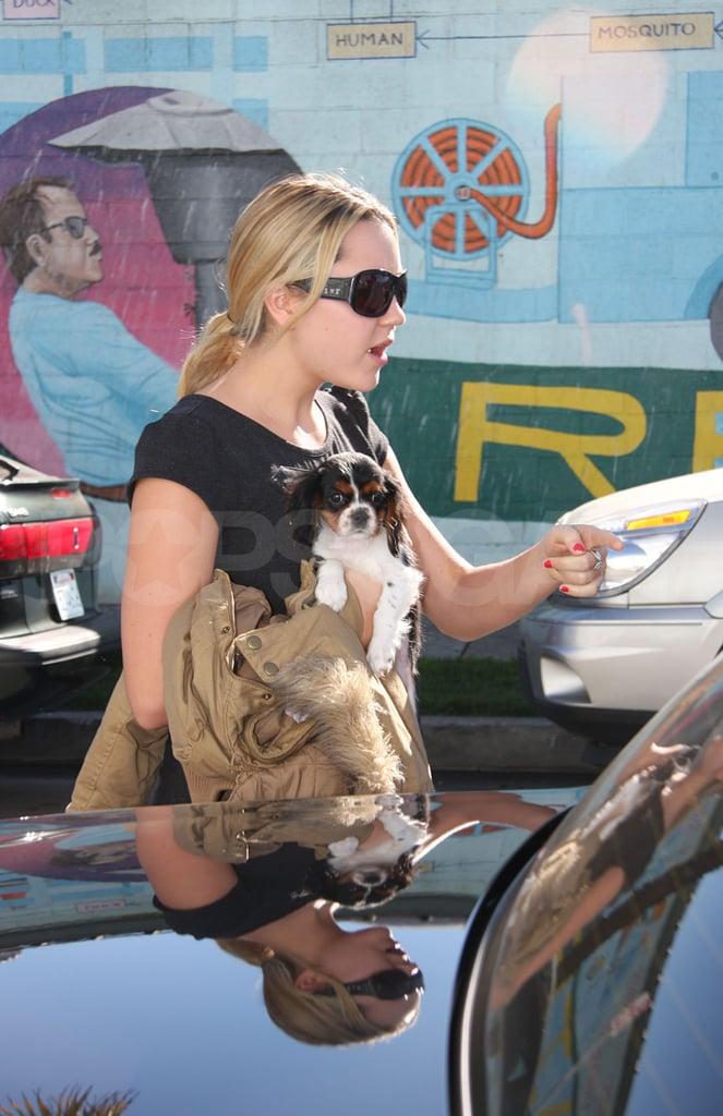 New Puppy Alert! Amanda Bynes