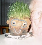 Grandpa Looks Like Chia Head