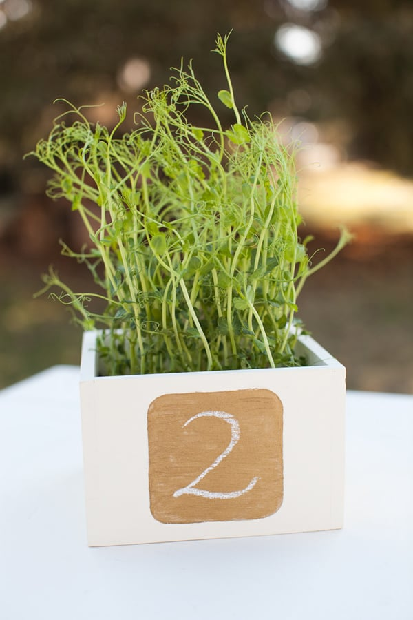 Metallic Chalkboard Table Numbers