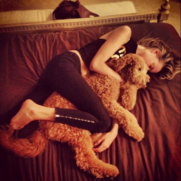 Behati Prinsloo relaxed with a sweet pup after a long day of work. Source: Instagram user behatiiprinsloo