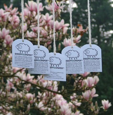 Casa Verde: Poo-Pourri and Sheep Poo Paper