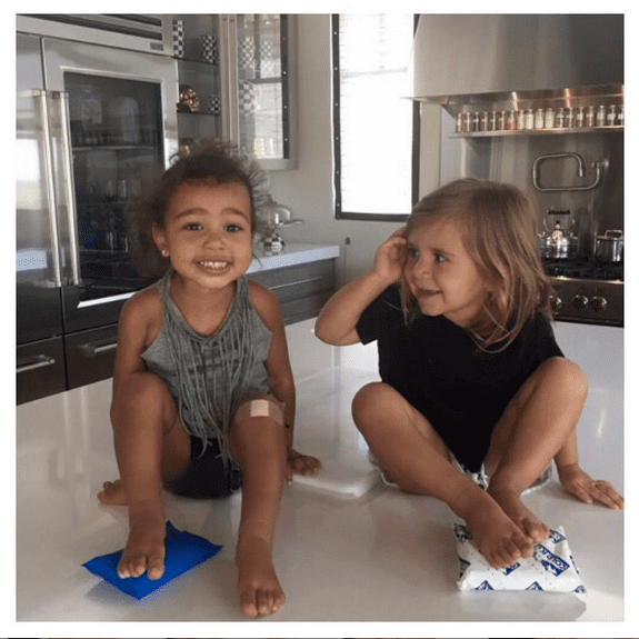 North and Penelope had fun on the kitchen counter.