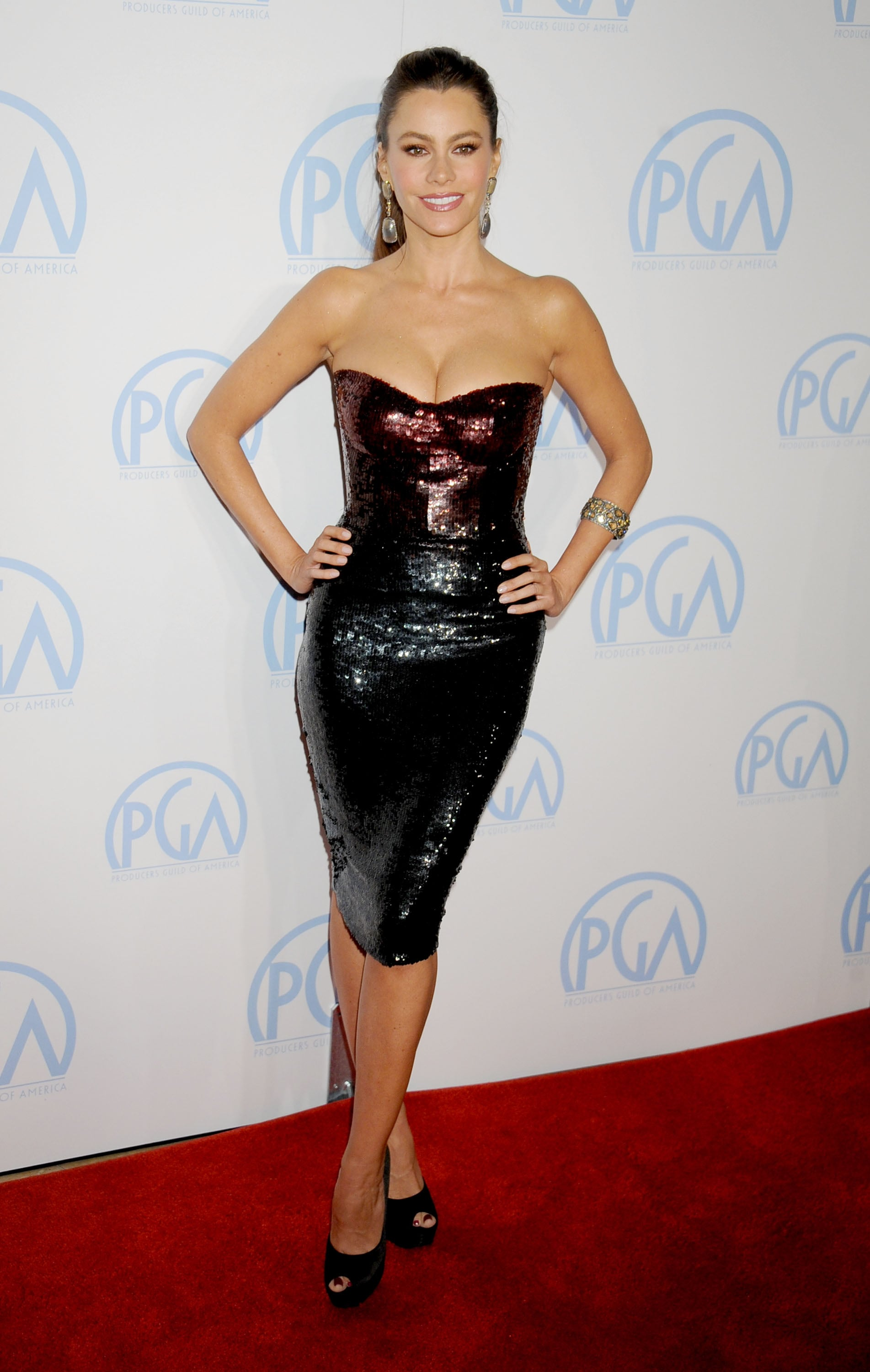 The brunette stunner overdosed on sparkle — in a good way — working an ombré Monique Lhuillier body-con dress at the 2012 Producers Guild Awards.