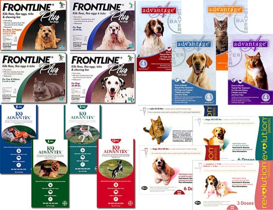 Which Flea and Tick Meds Do You Use?