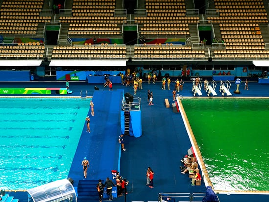 Diver Abby Johnston Asks 'If I Turn the Color of Shrek, Will You Still Be My Friend?' Ahead of Event in Green Pool
