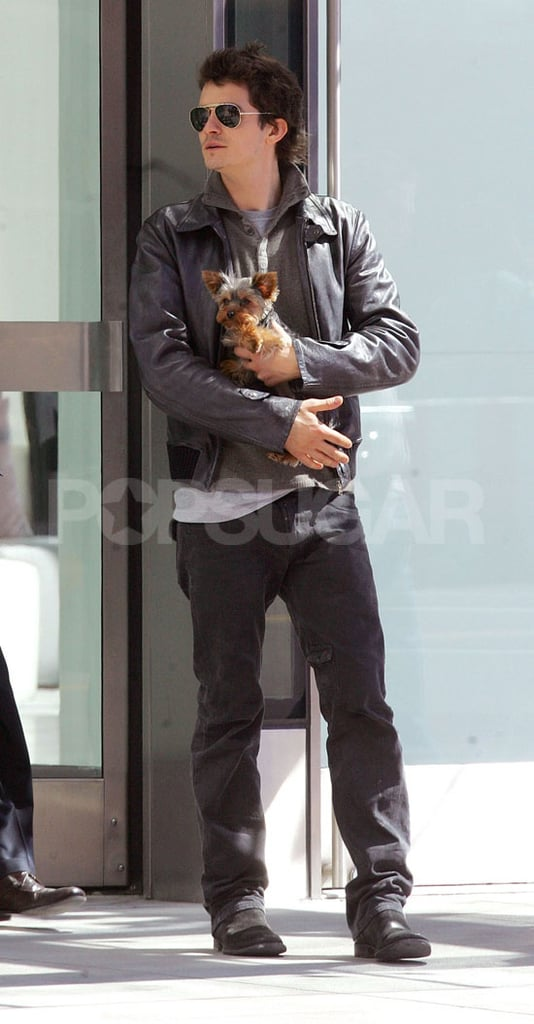 Orlando in Bloom, Now With Puppy