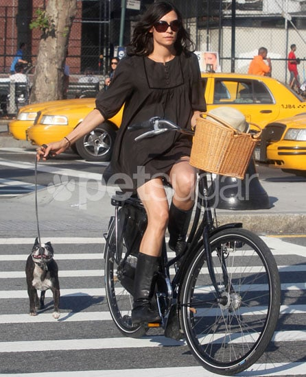 Famke and Licorice's Bike Adventure in the Big Apple