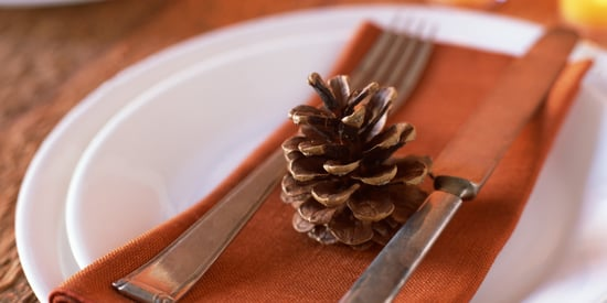 Thirteen Things You Never Knew About Pine Cones...