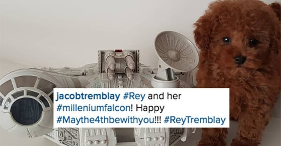 """Jacob Tremblay Shared A Cute Photo Of His Puppy For """"Star Wars Day"""""""