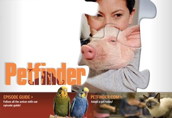 Petfinder Premieres Tonight on Animal Planet!