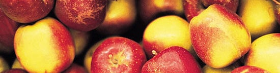 Five Things About Apples