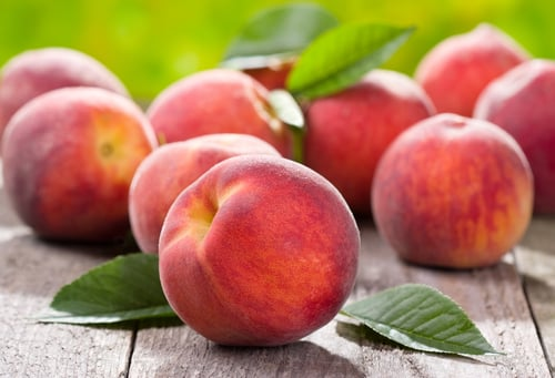 Pick Your Own Fruits From a Local Orchard