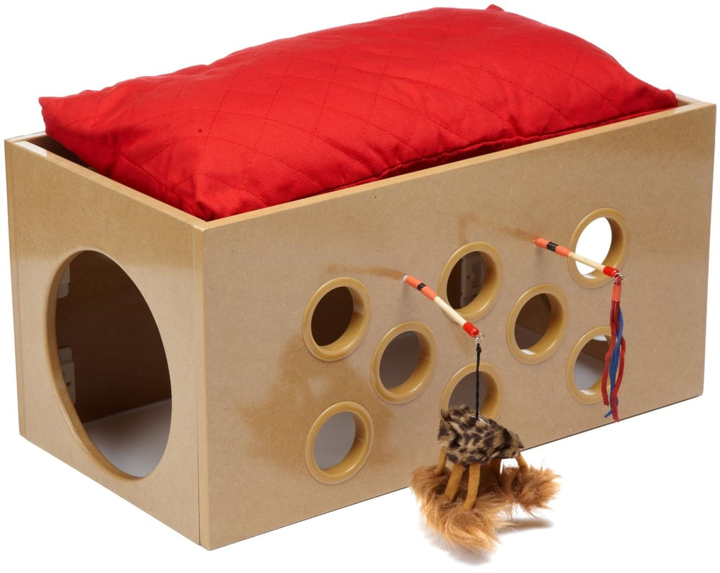 Cool Cat House