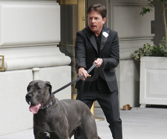 Slide Picture of Michael J Fox with Great Dane in New York