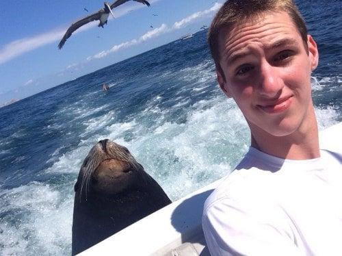 "Say ""Cheese and Seal"""