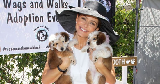 Maria Menounos Throws Her Dog a Sweet 16 Because Why Not