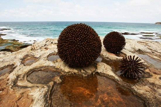 """Urchins"" by Kelly Ann Lees at 2008 Sculpture by the Sea in Sydney, Australia"