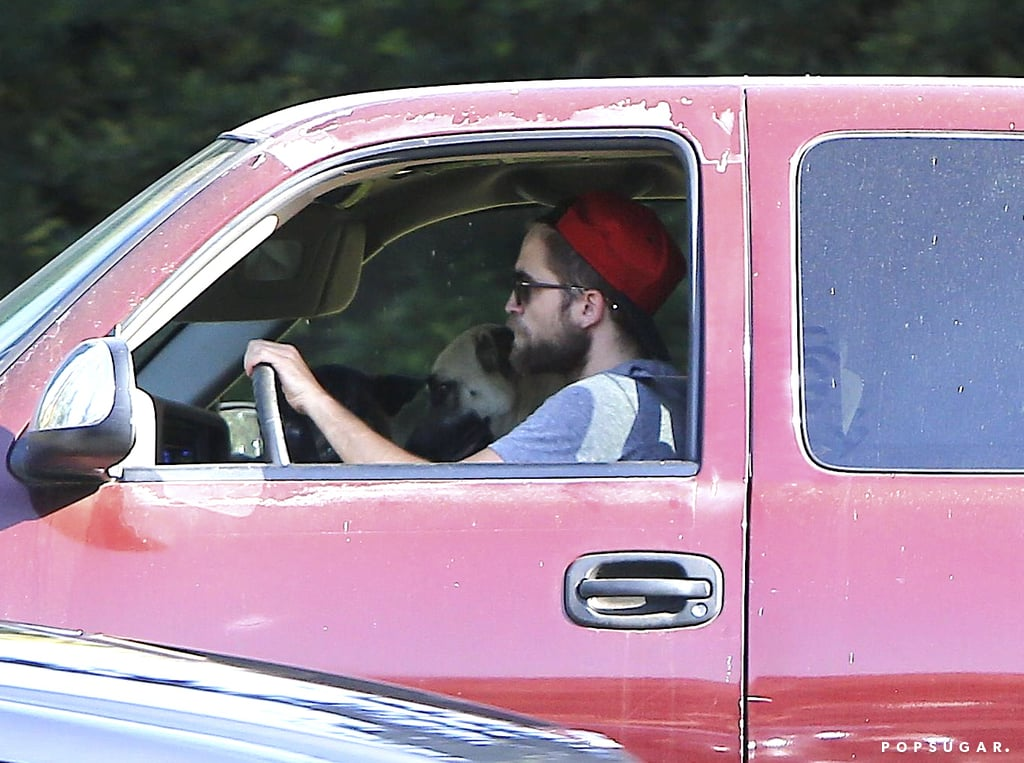 Robert Pattinson and his two dogs were spotted in his car.