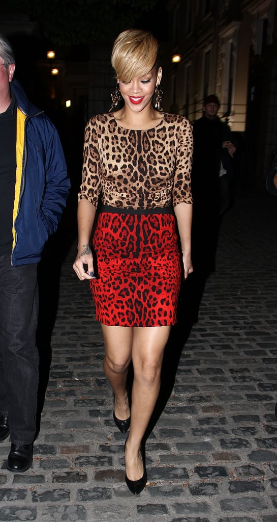 Rihanna's leopard colorblock Dolce & Gabbana mini lent major growl power to her 2010 Ireland style.