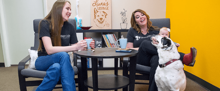 Wondercide Creators to Pitch Their All-Natural Pet Products on Friday's Shark Tank