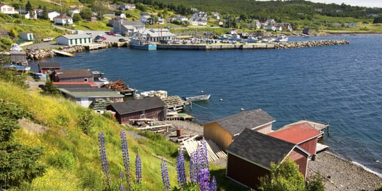 This Town Called Dildo Is Actually Quite Picturesque