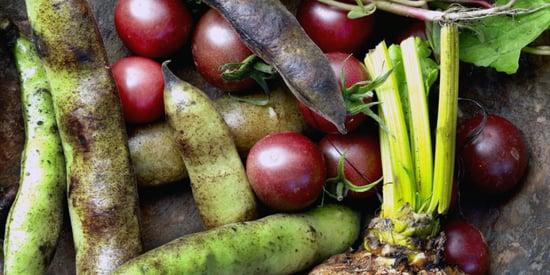 Obscure Summer Vegetables You Should Be Eating