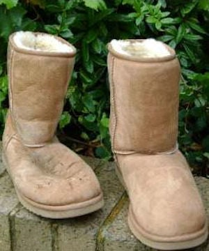 Ugg Shoes Cleaning