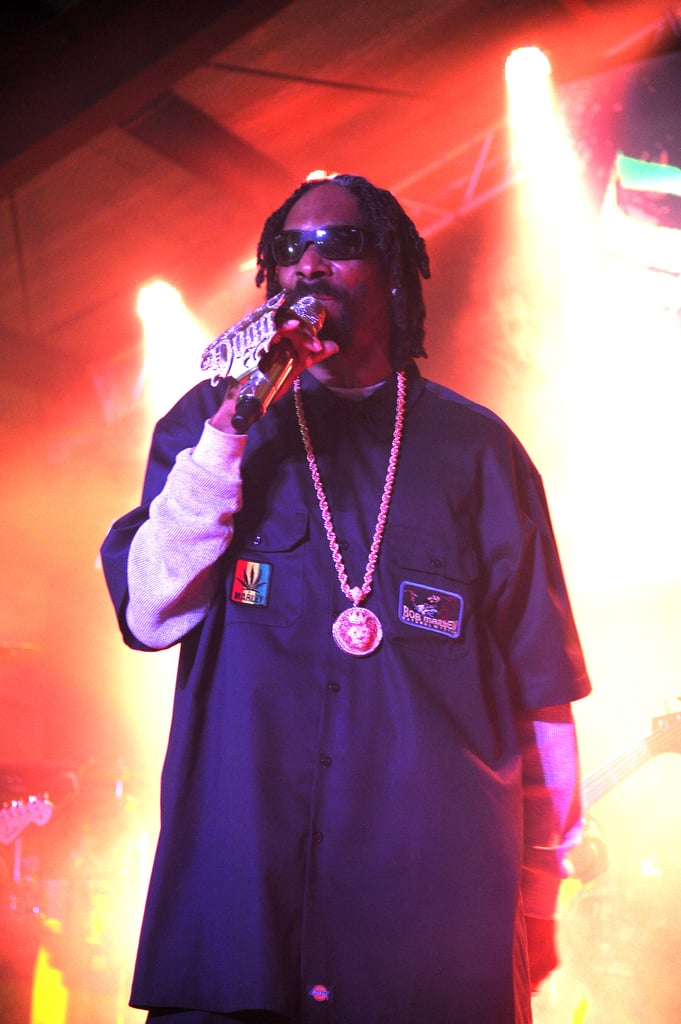 Snoop Lion hit the stage during the festival.