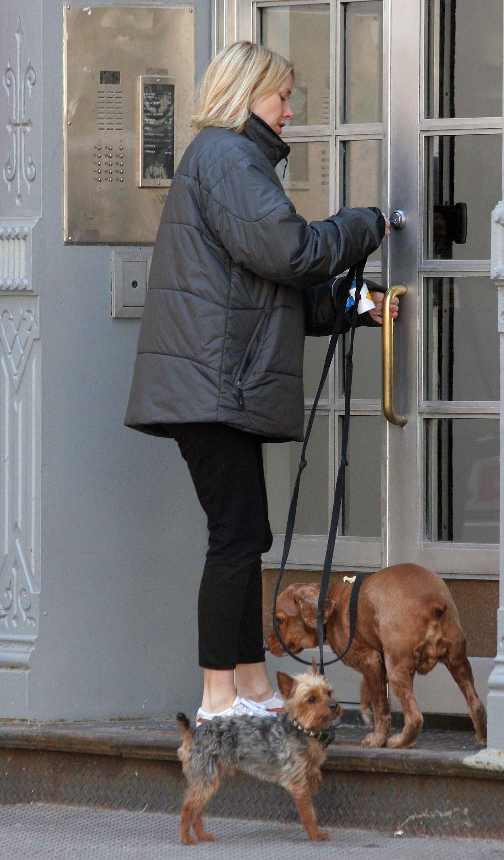 Naomi and The Dogs Take The Baby For a Walk
