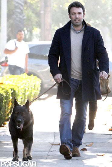Ben Affleck took his dog for a walk in LA.
