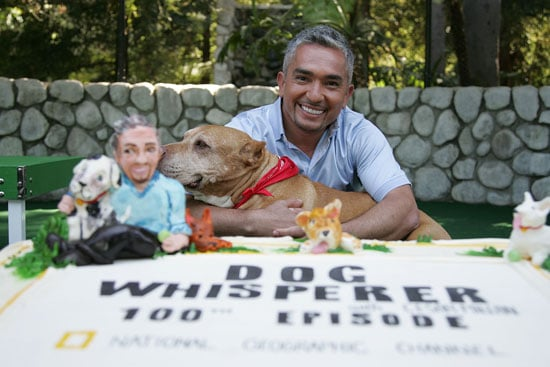 The Scoop: The 100th Episode Dog Whisperer Reunion Show