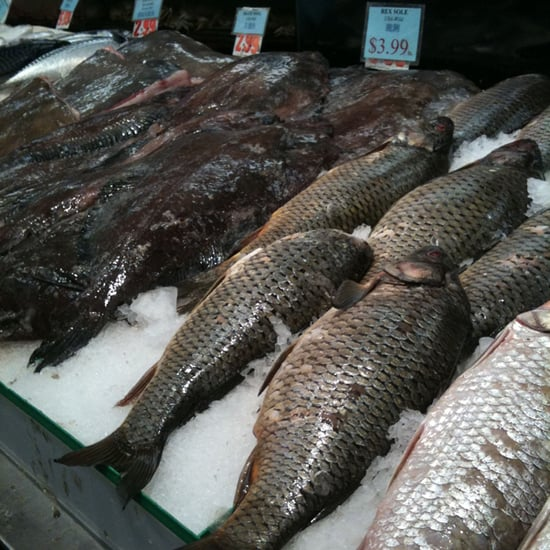Future of the World's Seafood Supply