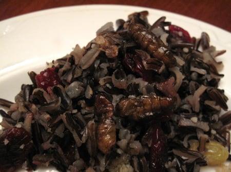 Silkworm Wild Rice Medley
