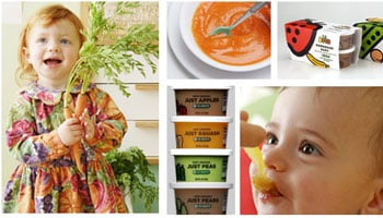 Ecotot: Homemade Baby Food