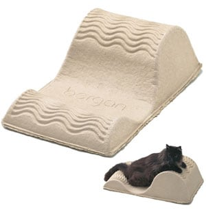 For Nine Bucks, Felines Can Beat This Eco-tastic Lounge to a Pulp