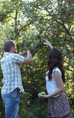 Get Physical: Go Apple Picking