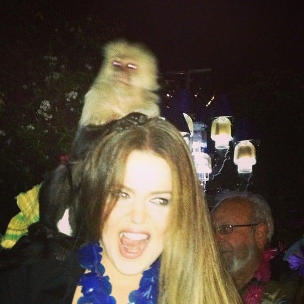 Khloe Kardashian made friends with a monkey this week.  Source: Instagram user khloekardashian