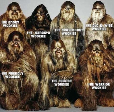 Memes that feature the emotional spectrum of a famous characters have become increasingly popular via Facebook, and Digital Citizen makes sure that Wookiee emotions aren't left out.