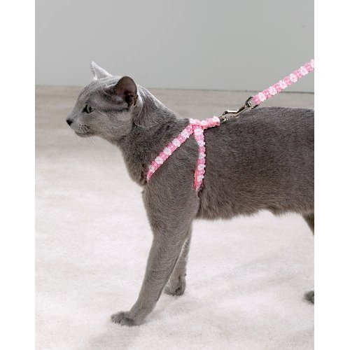 To the Rescue: Leashes Aren't Just for the Dogs
